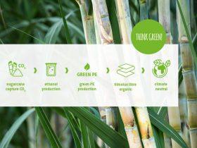 filmolux libre organic